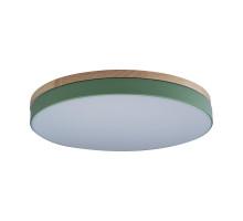 Детский светильник LOFT IT 10001/36 Green